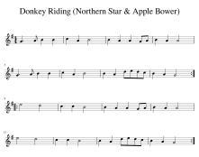 Donkey_Riding